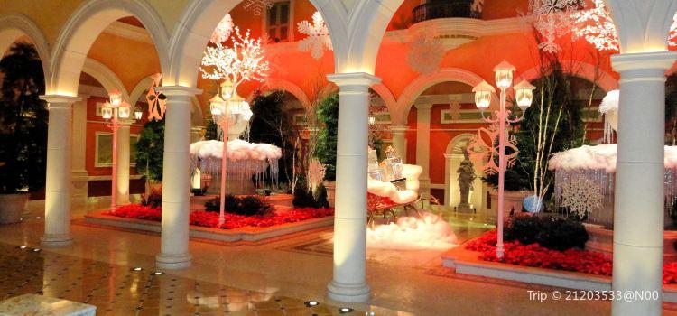 Bellagio Conservatory and Botanical Gardens3
