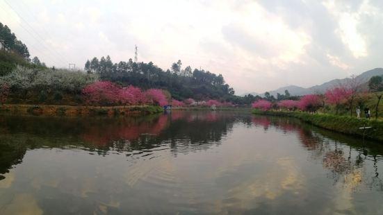 Jinshi Park
