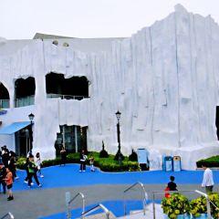 Arctic Blast User Photo