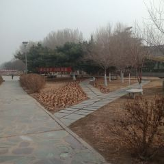 Jiangjun Park User Photo