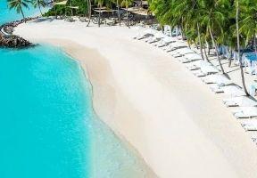 美人的脣邊,小島的沙灘