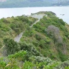 馬蒂尤/薩姆斯島用戶圖片