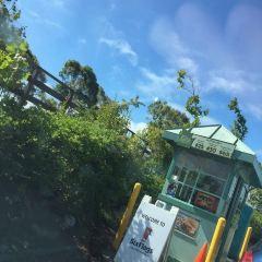 六旗探索王國主題公園用戶圖片