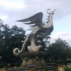 金碧公園用戶圖片