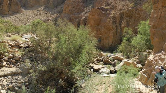 Wadi Al Nakheel Trail