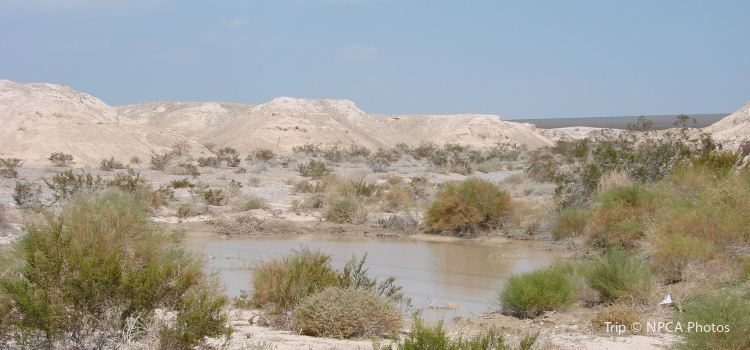 Tule Springs Fossil Beds National Monument2