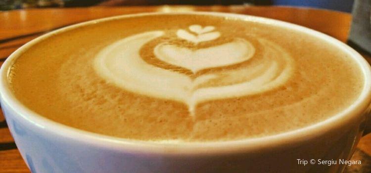 Tucano Coffee Kenya1