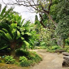 伊頓花園用戶圖片