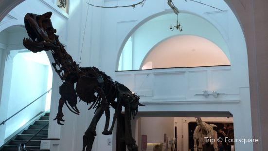 Sao Paulo Museum of Zoology