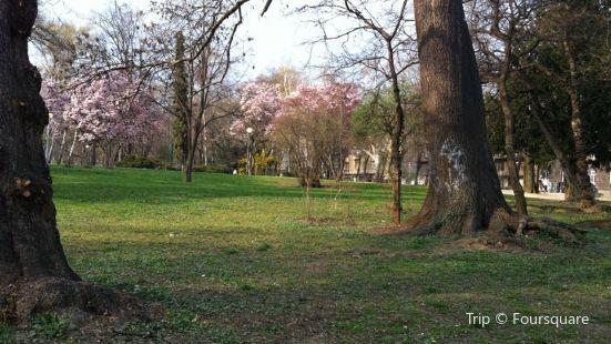 Park Ribnjak