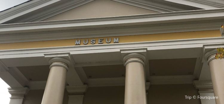 New Walk Museum and Art Gallery2
