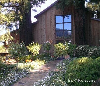 Sequoia Grove1