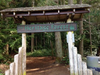 Heritage Forest