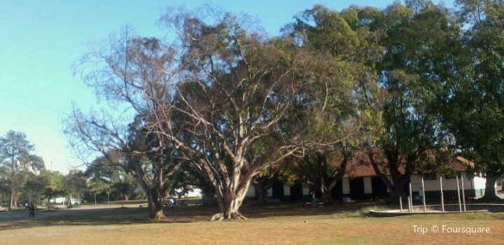 Parque Vila Guilherme - Trote2