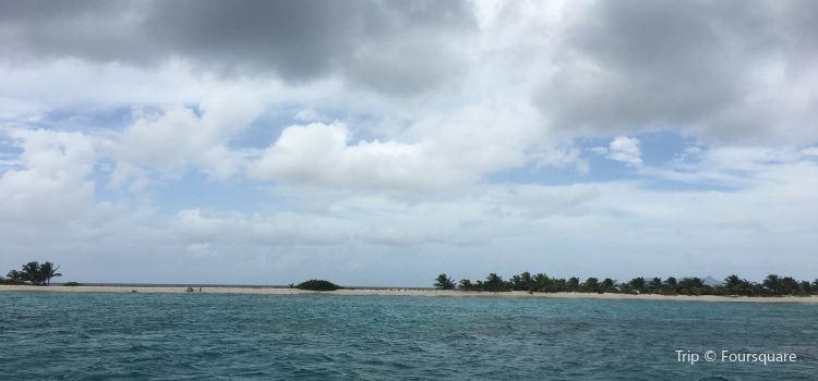 Sandy Island1