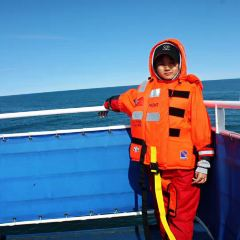 Elding Whale Watching User Photo