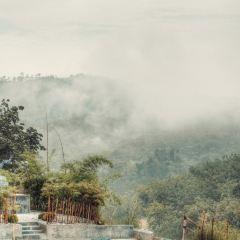 Kechara Forest Retreat用戶圖片