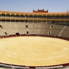 Bullfighting Museum User Photo