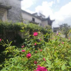 핑산촌 여행 사진