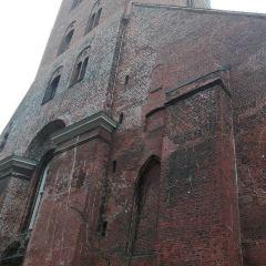聖彼得裡大教堂用戶圖片