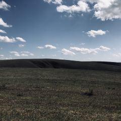 白音錫勒牧場景區用戶圖片