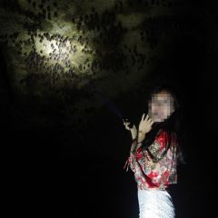 蝙蝠洞用戶圖片