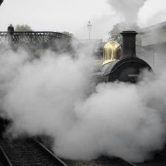 Swansea Museum User Photo