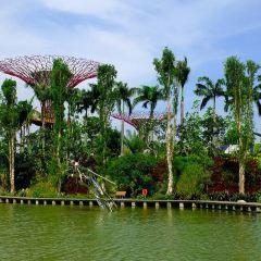 에스프라나드 공원 여행 사진