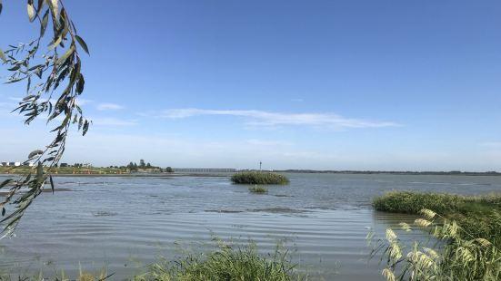 柳樹灣濕地公園