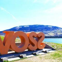 Voss User Photo