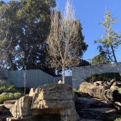 Adelaide Zoo User Photo