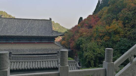 Dingjiayu