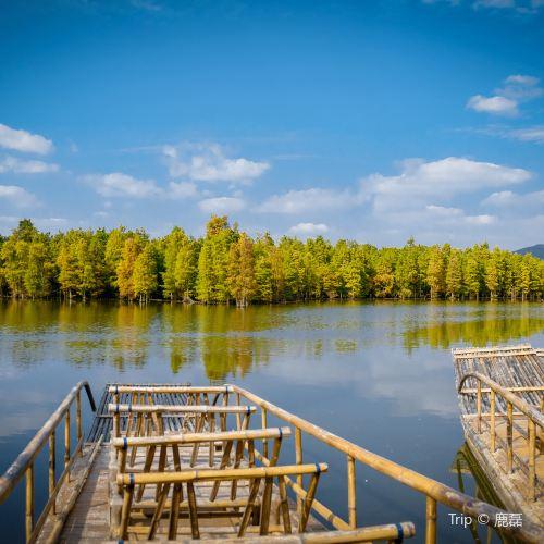 尚湖風景區