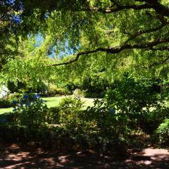 Parsons Gardens User Photo