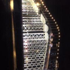澳氹大橋用戶圖片