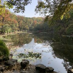 Zhongshan Mountain Mational Park User Photo