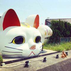 Great Beckoning Cat Statue User Photo