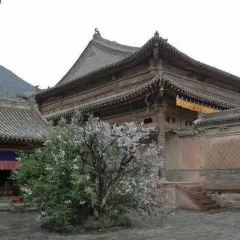 瞿曇寺用戶圖片