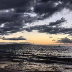 威雷亞海灘用戶圖片