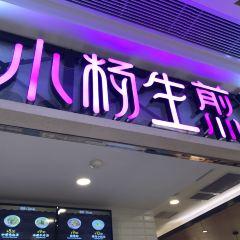小楊生煎(吳江路店)用戶圖片