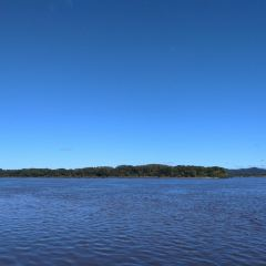 烏蘇里江國家森林公園用戶圖片