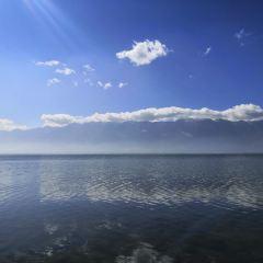 洱海用戶圖片