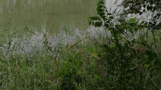 Nanyihu Marsh