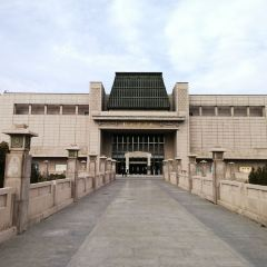 徐州博物館用戶圖片