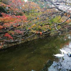 Motomachi Ijinkan User Photo