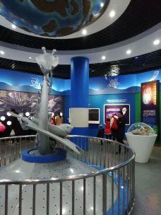 北京自然博物馆-北京-大大的浪花