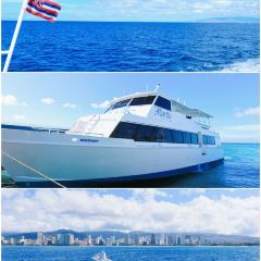 Atlantis Submarines User Photo
