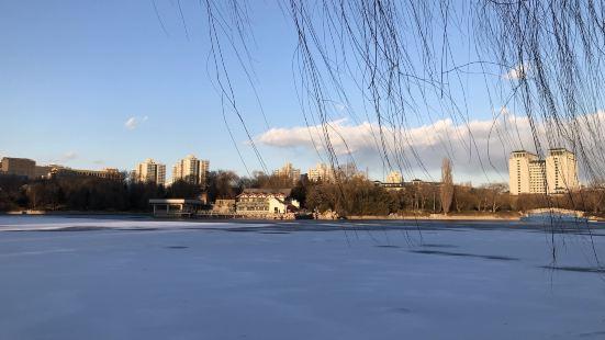 紫竹院公園冰場