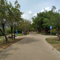 Egret Park User Photo