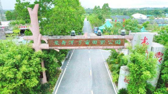 龍寿洋万畝田野公園